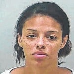 Woman pleads guilty in central Ohio theft ring case