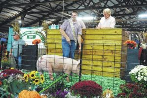 4-H'ers mean business at swine, lamb sale