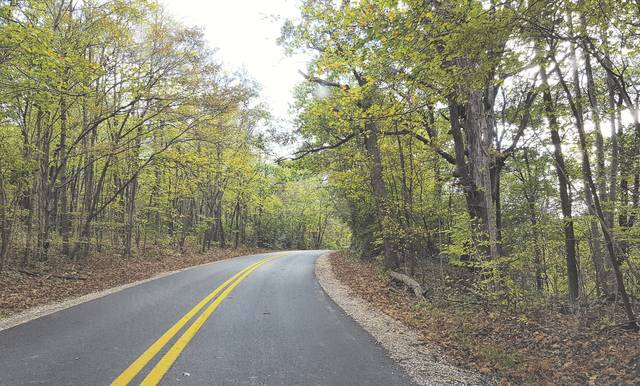 Pictured is the northern portion of Hogback Road that winds through a large wooded area just south of Kilbourne Road and to the east of Alum Creek Lake. Located near Interstate 71 in Delaware County, the road has long been thought to be home to paranormal activity and is mentioned on various websites dedicated to haunted places.
