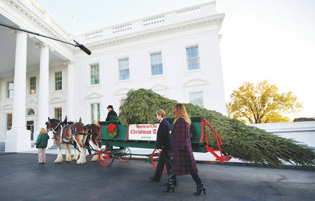 First lady Melania Trump and her son Barron Trump, look at the Wisconsin-grown Christmas Tree on Monday at the North Portico of the White House in Washington. The tree will be displayed in the White House Blue Room.