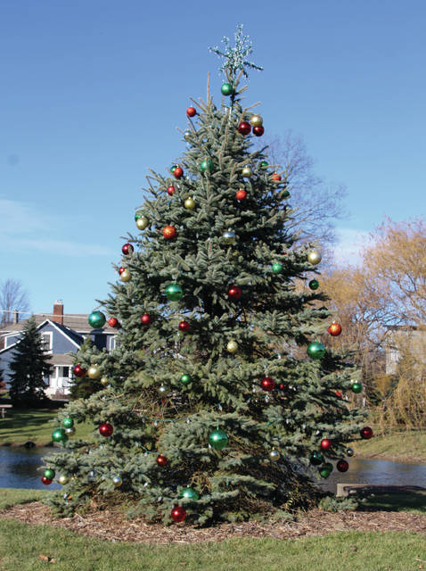 The Christmas tree in the City of Powell's Village Green Park is just waiting to be lighted for the season. The tree-lighting ceremony is scheduled for 6 p.m. on Saturday during the city's Holidays in Powell event. Santa and Mrs. Claus and Powell Mayor Brian Lorenz will do the honors. Holidays in Powell starts at 2 p.m. Saturday at the Municipal Building, 47 Hall Street. Admission is free.