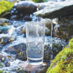 Chow Line: 'Raw' water trend can make you sick