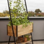 Grow a Bigger Garden in a Smaller Space