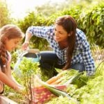 Family Gardening Provides More Than a Bountiful Harvest